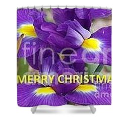Shower Curtain featuring the photograph Christmas Card by Rod Ismay