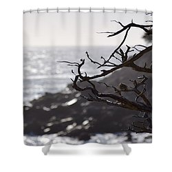 17 Mile Drive  Shower Curtain