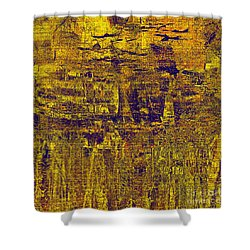 1748 Abstract Thought Shower Curtain