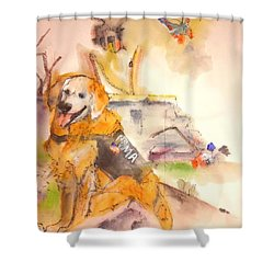 Dogs  Dogs  Dogs  Album  Shower Curtain by Debbi Saccomanno Chan