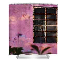 Shower Curtain featuring the photograph 18 Rectangles  by Prakash Ghai