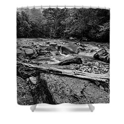 Shower Curtain featuring the photograph Williams River Summer by Thomas R Fletcher