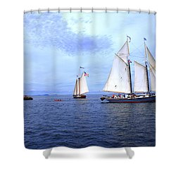 1871 Lewis R French Shower Curtain
