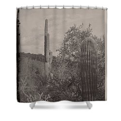 1880's Vintage Style Of Arizona Shower Curtain by Carolina Liechtenstein