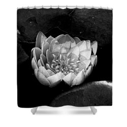 Black And White Flower  Shower Curtain