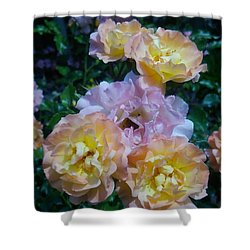 Rose Shower Curtain by Tomoko Takigawa