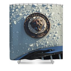 1954 Jaguar Xk120 Roadster Hood Emblem Shower Curtain by Jill Reger