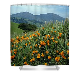 1a6493 Mt. Diablo And Poppies Shower Curtain