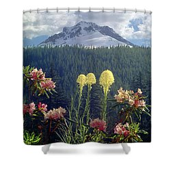 1m5101 Flowers And Mt. Hood Shower Curtain