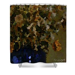 2-13-2057d Shower Curtain