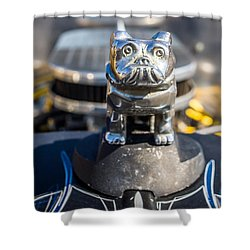 Shower Curtain featuring the photograph 51 Ford F-1 Rat Rod - Ehhs Car Show by Michael Sussman
