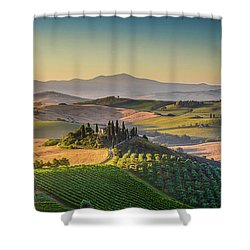 A Golden Morning In Tuscany Shower Curtain