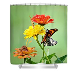 A New Beginning Shower Curtain