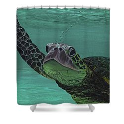 Shower Curtain featuring the painting Aloha From Maui by Darice Machel McGuire