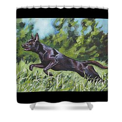 Shower Curtain featuring the painting Australian Kelpie by Lee Ann Shepard