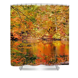 Autumn Reflections Shower Curtain by Kristin Elmquist