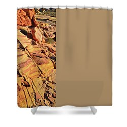 Shower Curtain featuring the photograph Bands Of Color In Valley Of Fire by Ray Mathis