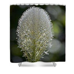 Bear Grass Shower Curtain