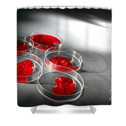 Shower Curtain featuring the photograph Biotechnology Experiment In Science Research Lab by Olivier Le Queinec