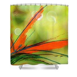 Bird Of Paradise 2 Shower Curtain by Kume Bryant
