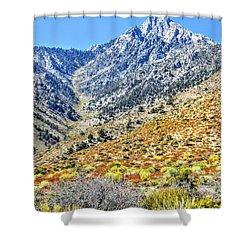 Bountiful Desert Shower Curtain