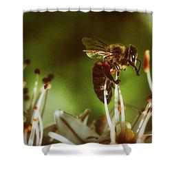 Shower Curtain featuring the photograph Bzzz by Michael Siebert