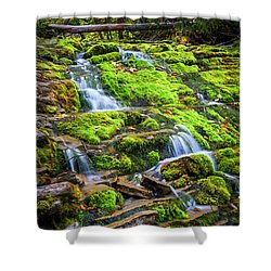 Shower Curtain featuring the photograph Cascading Waterfall by Elena Elisseeva