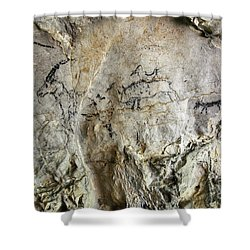 Cave Painting In Prehistoric Style Shower Curtain by Michal Boubin