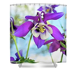 Shower Curtain featuring the photograph Columbine by Kristin Elmquist