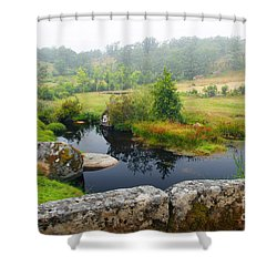Creek Shower Curtain by Carlos Caetano