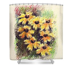 Daisies Shower Curtain by Rachel Christine Nowicki