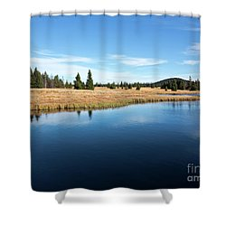 Dead Pond Shower Curtain by Michal Boubin