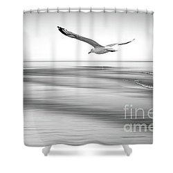 Shower Curtain featuring the photograph Desire Light Bw by Hannes Cmarits