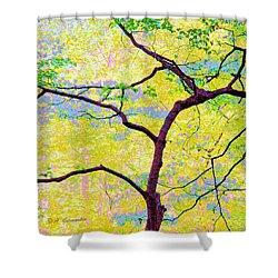 Shower Curtain featuring the digital art Dogwood Tree In Spring by A Gurmankin