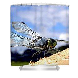 Dragonfly On A Mushroom 001  Shower Curtain