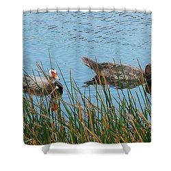 Shower Curtain featuring the photograph 2- Ducks by Joseph Keane