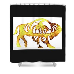 Shower Curtain featuring the photograph End Of The Trail by Larry Campbell