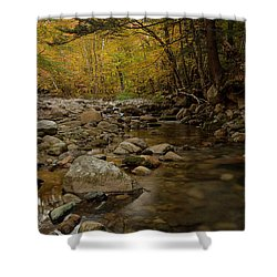 Fall On The Gale River Shower Curtain