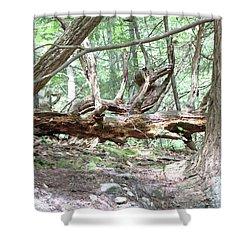 Fallen Tree Shower Curtain