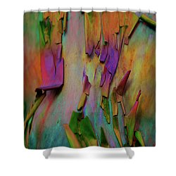 Fearlessness Shower Curtain