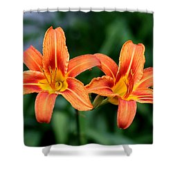 Shower Curtain featuring the photograph 2 Flowers In Side By Side by Paul SEQUENCE Ferguson             sequence dot net
