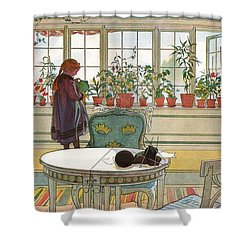 Shower Curtain featuring the painting Flowers On The Windowsill by Carl Larsson