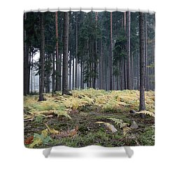 Fog In The Forest With Ferns Shower Curtain by Michal Boubin