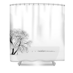Frozen Morning Shower Curtain