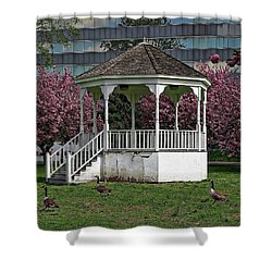 Gazebo In The Park Shower Curtain