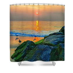 Jersey Shore Shower Curtain by Lauren Fitzpatrick