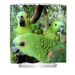 Shower Curtain featuring the photograph Happy Hour by Beto Machado