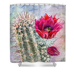 Hedgehog Cactus Shower Curtain