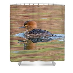 Hooded Merganser Shower Curtain by Jerry Cahill