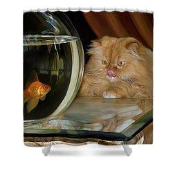 I Love Sushi Shower Curtain